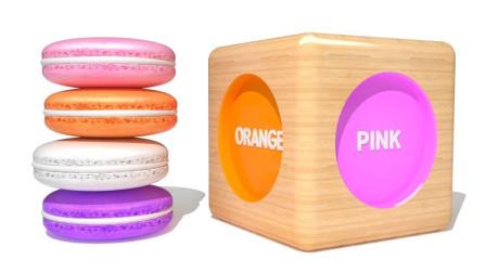 彩色马卡龙饼干玩具寻找位置