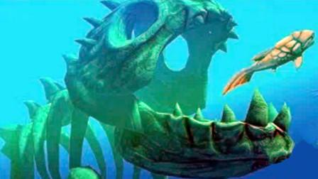 【XY小源】海底大猎杀 第55期 巨型骷髅鱼 真的恐怖