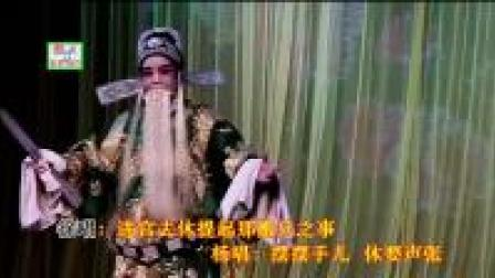 婺剧:KTV学唱版:龙凤阁1《前面走的是定国老王》老玩童