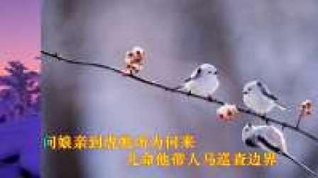 婺剧:KTV学唱版【辕门斩子  老娘亲来到帐外】老玩童