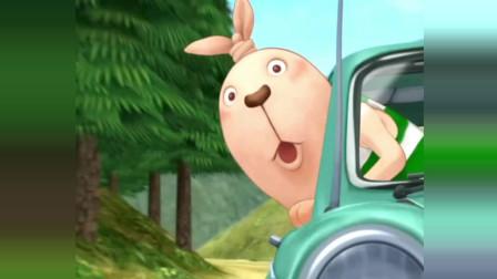 逃亡兔: 这兔子也太厉害了, 行驶当中居然把头探出车窗外。太惊险了!