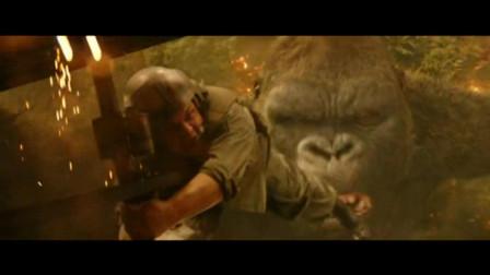金刚2: 骷髅岛, 美国空军肆意轰炸森林惹怒了大猩猩