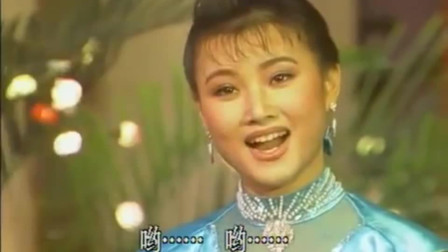 宋祖英春晚演唱《小背篓》, 从此便成为了好多人心目中的女神!