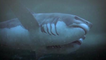 3分钟看搞笑科幻片《夺命双头鲨》, 头在尾巴上的鲨鱼你见过吗?