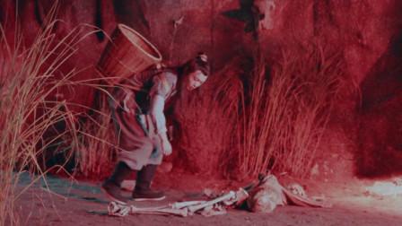 男子采药时坠崖, 不料却捡到一束神奇的花朵, 可使动物化成人形