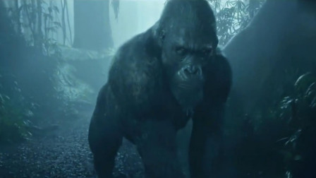 人猿泰山, 被黑猩猩养大成人, 最后与猩猩兄弟对抗入侵者