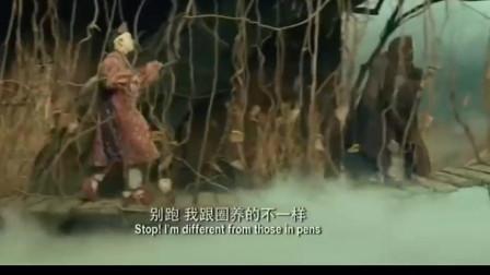 西游记之三打白骨精-猪八戒长的太丑把老太太吓跑了-还说自己是宠物!