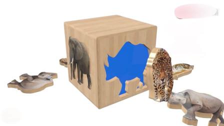 动物园狮子老虎大象益智拼图学颜色 少儿英语启蒙