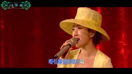 杨钰莹才是真正不老女神, 2019再唱茶山情歌, 过去那么多年, 竟还是当年俏模样