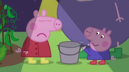 小猪佩奇 第六季09夜行动物