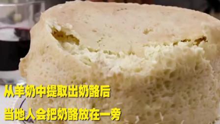 世界上最危险的奶酪: 意大利的活蛆奶酪
