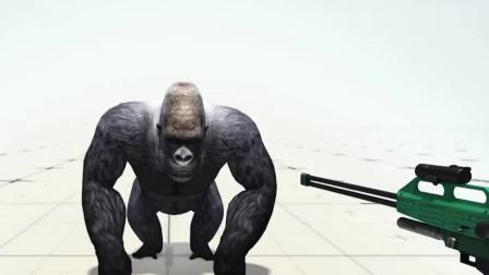 奇闻录: 调皮的男孩跌入4米深的猩猩园, 让人意外