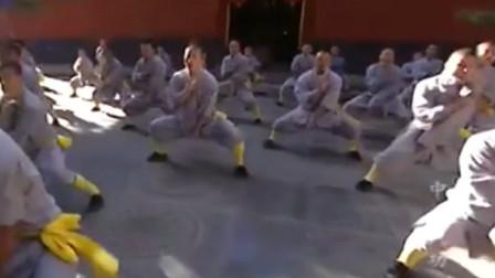 少林功夫中国范围最广, 历史最长, 拳种最多? 不