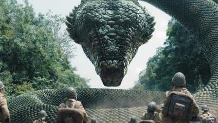 国产版的《狂蟒之灾》日本兵荒岛行军,一不留神惊醒大蛇被吓哭