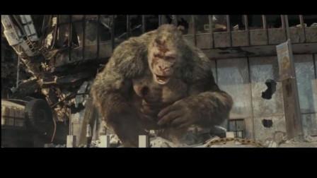 我的视频巨石强森电影狂暴巨兽精彩片段剪辑