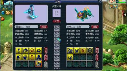 梦幻西游: 8技能死亡画魂+5技能法防龙龟炼妖, 狗托小龙女操刀, 能逆袭吗?