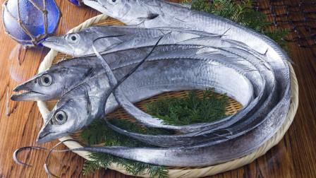 吃了几十年的冻带鱼, 却没有吃过新鲜的带鱼, 这是为什么?