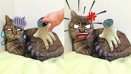 主人偷懒竟然买个假手撸猫, 喵: 你这是在玩火!