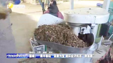 """陕西蒲城""""果木香菇""""变废为宝,循环经济拓宽致富经济路"""