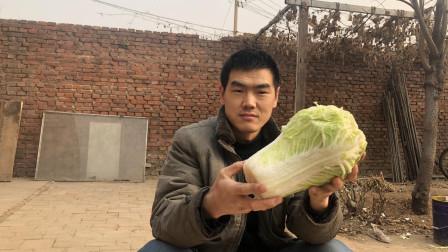 """阿远做了一道家常""""醋溜白菜"""", 自家种的白菜, 配上馍真好吃"""