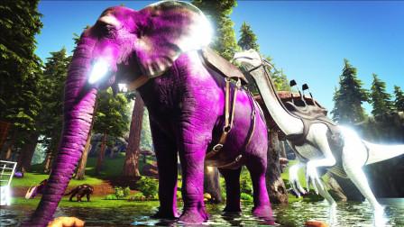 【虾米】方舟: 帕格纳西亚EP4, 大象和记仇的猴子!