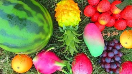 媛媛识果蔬 认识西瓜等8种水果蔬菜