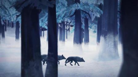 【漫漫长夜第二季】娱乐解说04期-首杀黑熊