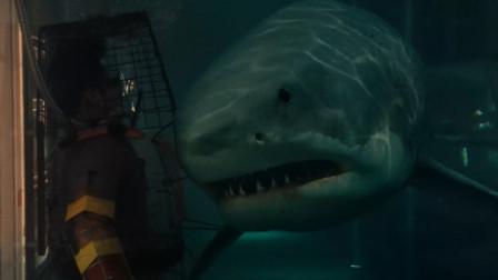 《大海啸之鲨口逃生》海啸过后, 鲨鱼来了, 男子游得太慢, 被鲨鱼咬得四肢分离