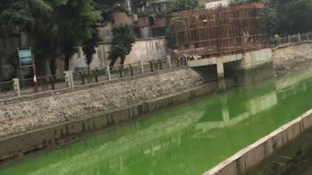 """广东广州海珠涌突然""""绿""""了500米 一夜间颜色恢复正常!"""