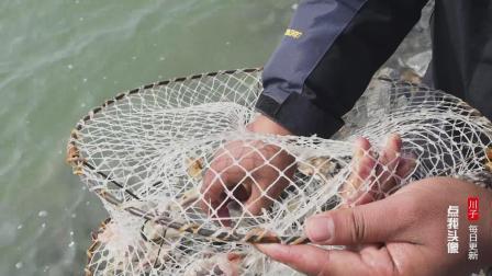 农人川子: 小伙网上买了5个地笼, 准备抓螃蟹, 用十米长绳拽出来
