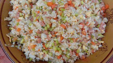 纯肉火腿, 胡萝卜, 洋葱, 二妮做的蛋炒饭, 好吃得舍不得放下碗