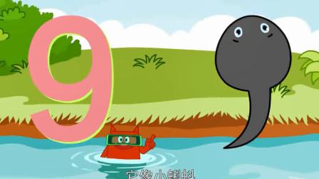 创意手工动画: 数字9像小蝌蚪 幼儿数学启蒙动画片