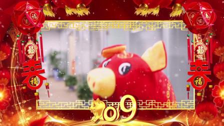 2019年欧孕母婴祝福大家新年快乐