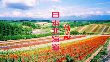 游览日本北海道VLOG, 带你去看不一样的北海道风情213