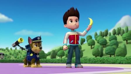 汪汪队立大功:莱德用香蕉抓猴子小曼,结果没抓到!