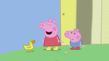 啥是佩奇刷爆朋友圈 这只小猪每年全球零售额超过12亿美元