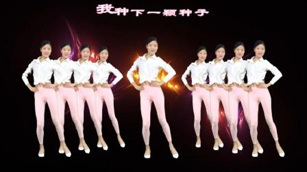 筷子兄弟经典《小苹果》小姐姐跳广场舞火了!
