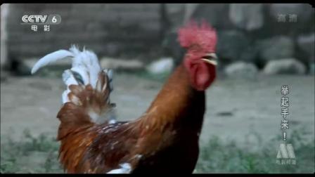 举起手来, 鬼子进村抢鸡, 看见潘长江抢的鸡我笑了