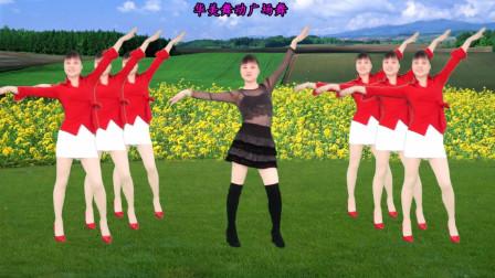 最新流行广场舞《女人漂亮不是罪》动感时尚现代舞 好听又好看