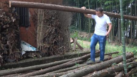 农村四哥: 王四今天帮干爹扛树子, 100多斤的杉树, 看着有点累