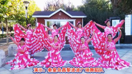 昌黎波波广场舞《我和我的祖国》变队形原创附教学