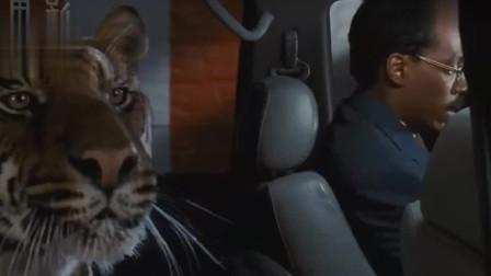 5分钟看完美国家庭喜剧电影《怪医杜立德》, 医生的奇怪经历。