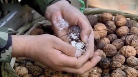 农妇请边防吃核桃,不料却查出核桃里面藏有,顿时懵了