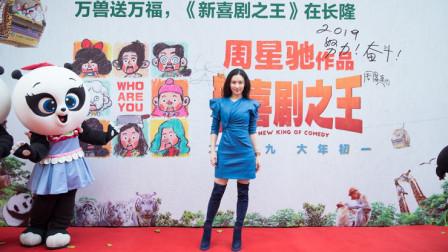 张柏芝周星驰王宝强同框, 张柏芝大长腿吸睛, 产后瘦身效果明显
