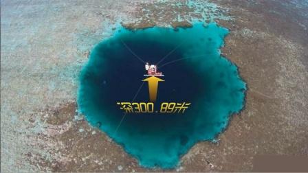 三沙现世界最深海洋蓝洞! 揭秘洞里藏有啥?