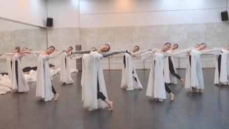 古典舞《丽人行》, 伴奏改成双面燕洵竟然火爆, 高雅和通俗的差距