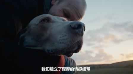 勃林格殷格翰--研究表明宠物有助于带来健康、高质量的生活