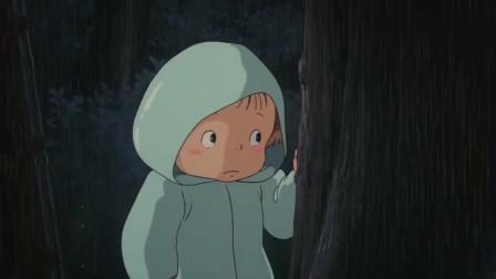 龙猫: 大雨天小梅在站台偶遇大龙猫, 它呆萌的样子实在太可爱了!