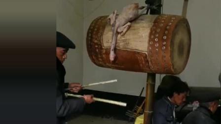 风味人间: 贵州苗族风俗, 这样的鸡更加美味