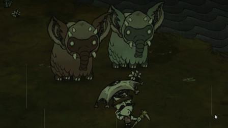 【小kou】饥荒:穿越档-大力士-05-鸭蛋来自何方?